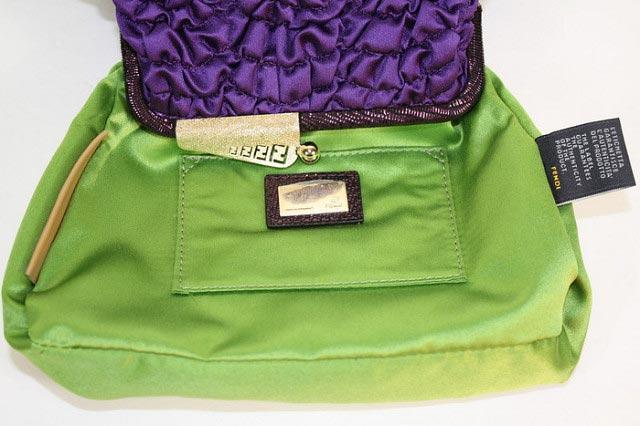 The Fendi Hand Bag