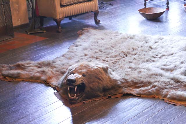 Using-Animal-Hide-Rugs-rustic-homes